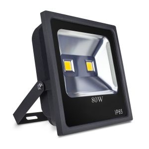 ProSafe 80W LED Floodlight, 8000 Lumens