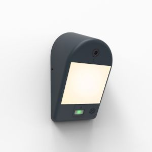 Black Mimo Outdoor LED Wall Light With With PIR Motion Sensor and Camera