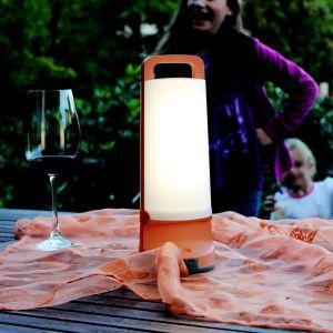 Orange Dragonfly Solar LED Portable Light